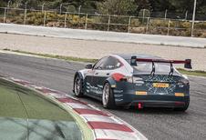 Belg Wolfgang Reip met Tesla Model S in Electric GT Challenge #1