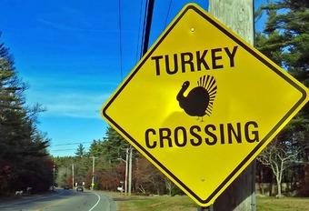 Les 7 voitures « turkey » récentes détestées des Américains #1
