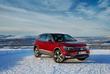 Volkswagen Tiguan : Renne des neiges