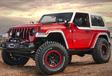 Jeep gaat op safari en neemt mee… #7