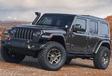Jeep gaat op safari en neemt mee… #6