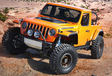 Jeep gaat op safari en neemt mee… #3
