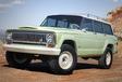 Jeep gaat op safari en neemt mee… #5
