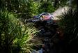 AutoWereld naar WRC Australië (5 en slot): opgave Neuville, zesde titel voor Ogier #3