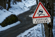 WRC 2021: achtste titel voor Ogier of eindelijk de eerste voor Neuville? #8
