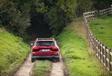 Ford Focus Active 1.0 EcoBoost mHEV 155 : Parure champêtre #10