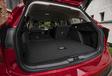 Ford Focus Active 1.0 EcoBoost mHEV 155 : Parure champêtre #19