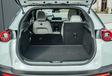 Deux SUV électriques : Que demande le peuple? #15