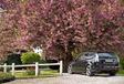 Saab 9-3 Sport-Hatch Turbo X #2