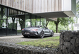 Mercedes-AMG GT C Roadster : Brushing express #13