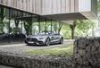 Mercedes-AMG GT C Roadster : Brushing express #2