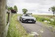 Mercedes-AMG GT C Roadster : Brushing express #3