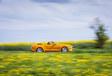 Ford Mustang GT Convertible A : balade américaine #8