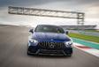 Mercedes-AMG GT 4 : L'irrationnelle #2