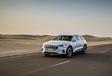 Audi e-tron : La verte Forest #24