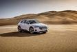 Audi e-tron : La verte Forest #2