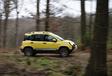 Fiat Panda 4x4 vs Suzuki Jimny : Le renard et la belette #7