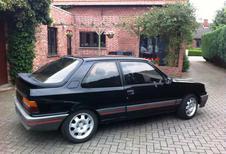 HET LEVEN ZOALS HET IS: Peugeot 309 GTI (1987)