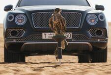 Bentley ontwikkelde speciale valkenierskit voor Bentayga
