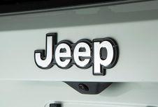 Une petite Jeep en gestation ?