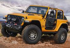 Jeep gaat op safari en neemt mee…