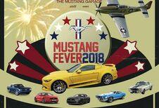 Mustang Fever : des modèles de 1964 à 2018 à Heusden-Zolder
