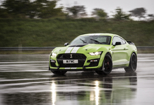 Ford Mustang Shelby GT500  - baas boven baas