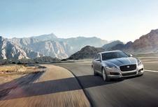 Jaguar XF : félin à l'affût