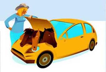 Les accros de l'auto #1