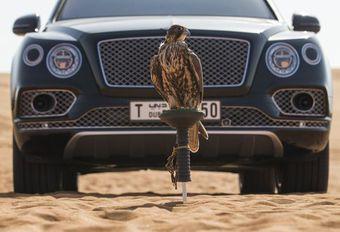 Bentley ontwikkelde speciale valkenierskit voor Bentayga #1