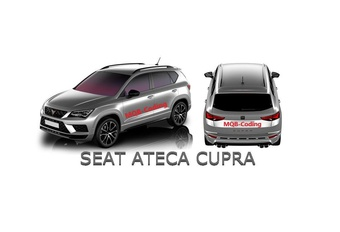 Seat Tarraco en Cupra Ateca gelekt #1