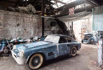 Zeldzame Jaguar bij schuurvondst in Gent #1