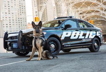 Ford : des voitures silencieuses pour les forces de l'ordre ? #1
