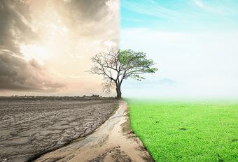 Ecolo/Groen presenteert klimaatwet in het parlement: welk gevolg voor transport? (2019) #1
