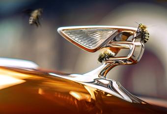 Bentley wil het milieu helpen met… bijen #1