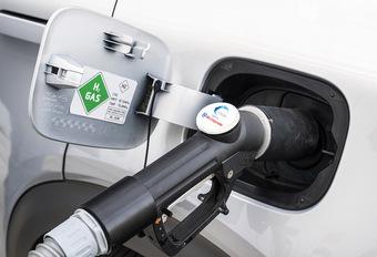 Duitsland richt zich ook op waterstof #1