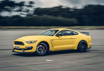 Ford Mustang Shelby GT350R - Cheval de course #1